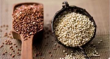 Wundermittel Quinoa – Teil 2
